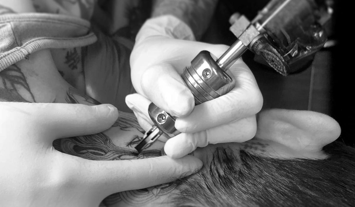 tatuador-leaf-pro